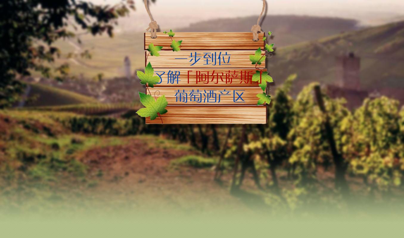 一步到位了解【阿尔萨斯】葡萄酒产区